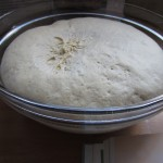 bread dough after proving