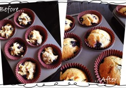 Muffins before and after baking