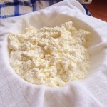 separating the curds and whey
