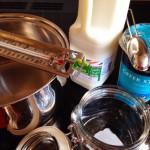 ingredients for yogurt are simple